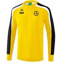 SGG Trainingssweatshirt